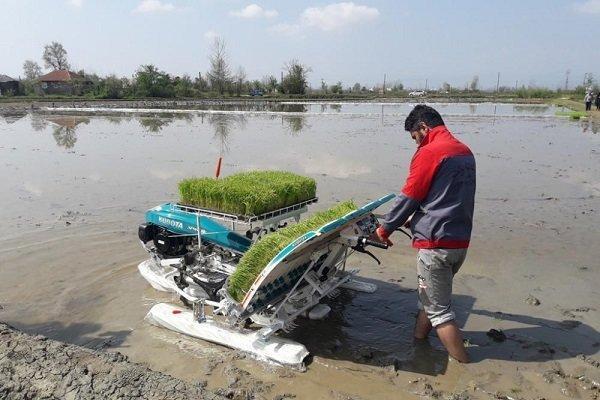 تولید بیش از 6 میلیون تن محصولات کشاورزی در مازندران