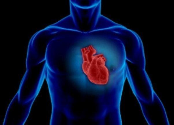 آمادگی قلبی و عروقی موجب طول عمر بیشتر می گردد