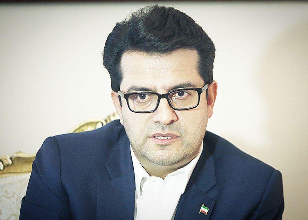 پاسخ سخنگوی وزارت خارجه به گزافه گویی هوک، عکس