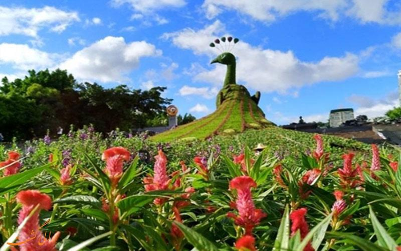 چین برای جذب گردشگر مجسمه گیاهی طاووس ساخته است